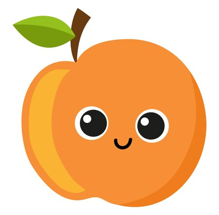 Cute apricot, illustration, vector on white background