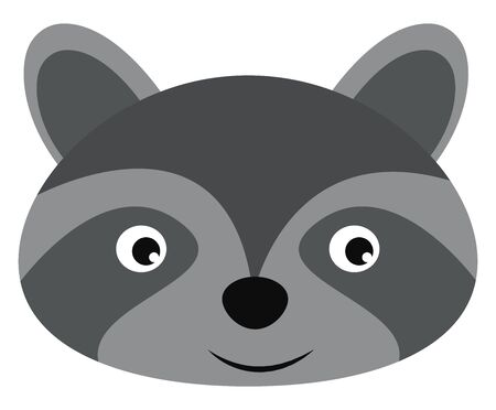 Cute silver raccoon, illustration, vector on white background.