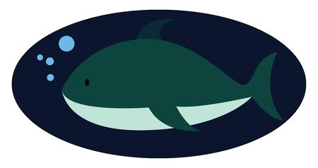 Shark in water, illustration, vector on white background.