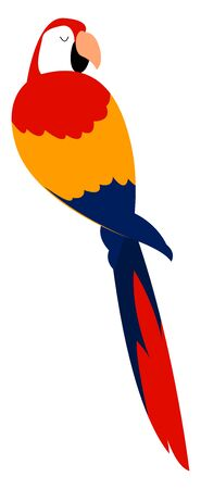Scarlet macaw, illustration, vector on white background.