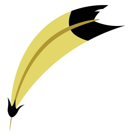 A yellow and black feather, vector, color drawing or illustration. Foto de archivo - 132798642