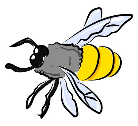 Bee drawing, illustration, vector on white background. Stock fotó - 132798912