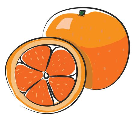 A very tasty big orange which is sliced, vector, color drawing or illustration.