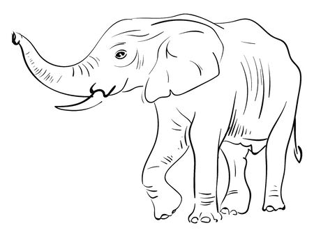 A neat sketch of a elephant in a paper, vector, color drawing or illustration. Иллюстрация