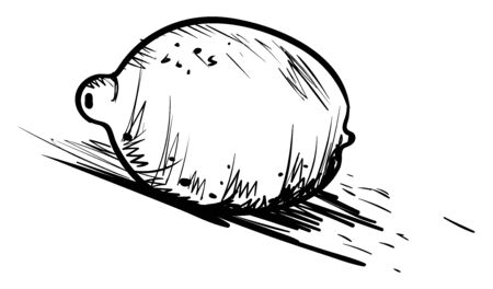 Lime drawing, illustration, vector on white background Çizim