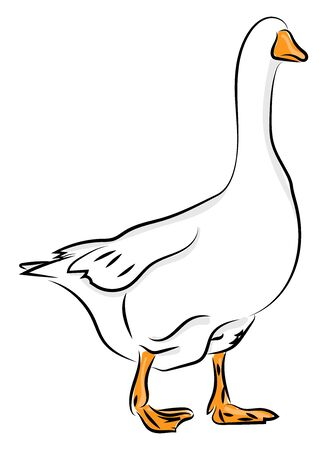 Goose with no face, illustration, vector on white background.