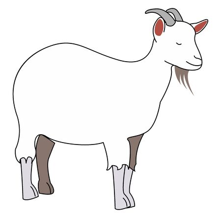 Goat with horns, illustration, vector on white background.