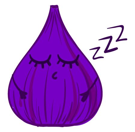 Purple sleeping fig, illustration, vector on white background