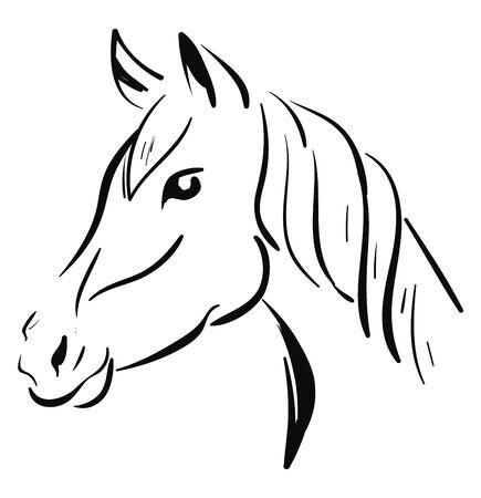 A black horse sketch, vector, color drawing or illustration.
