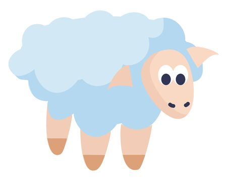 A small sheep with lot of white wool, vector, color drawing or illustration.
