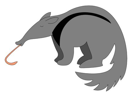 Anteater with long tongue, illustration, vector on white background.
