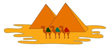 Camels and pyramids, illustration, vector on white background.