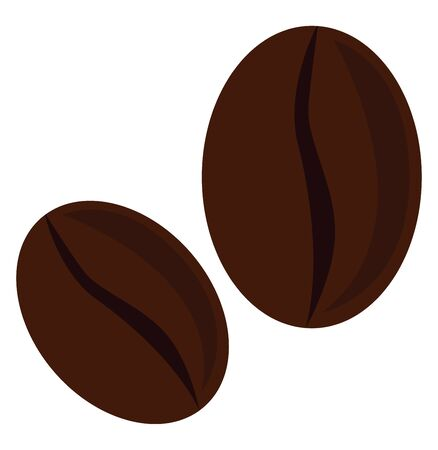roasted coffee beans, vector, color drawing or illustration. Stock Illustratie