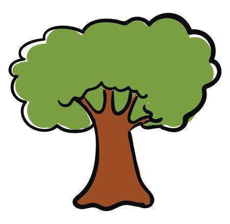 Big oak tree, illustration, vector on white background.