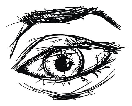 Drawing of eye, illustration, vector on white background.