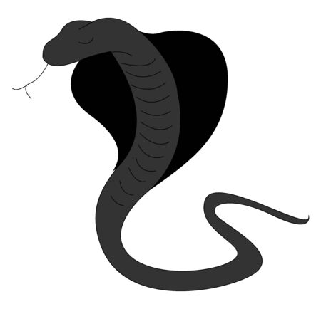 Black cobra snake, illustration, vector on white background.
