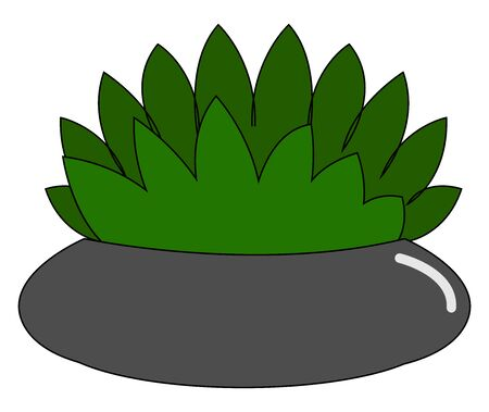 Home flower in pot, illustration, vector on white background Illustration