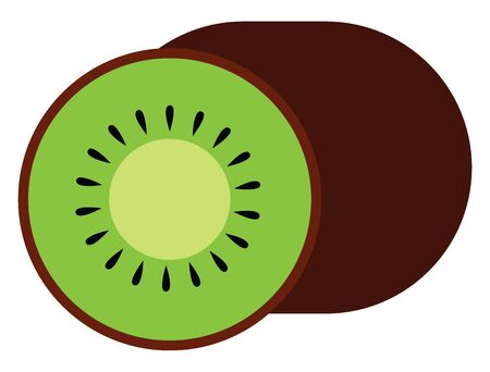 Sliced kiwi, illustration, vector on white background.