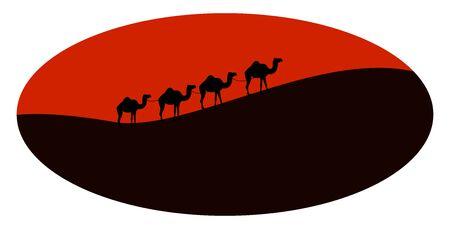 Camels in desert, illustration, vector on white background.