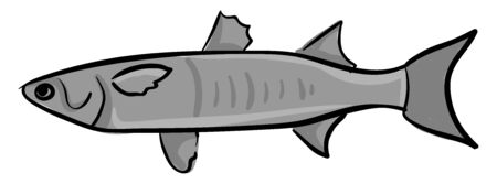 Mullet fish, illustration, vector on white background. Standard-Bild - 132777957