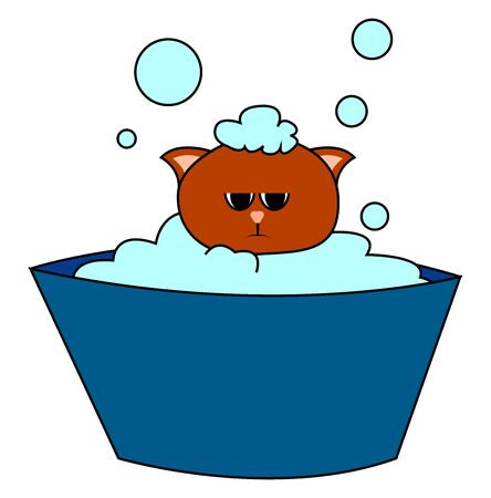 Cat is bathing, illustration, vector on white background.
