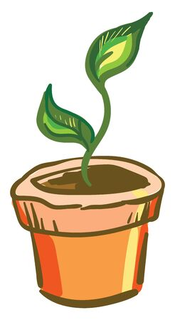 A small plant with two leaves in a orange pot, vector, color drawing or illustration.
