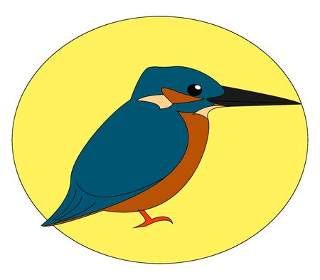 Common kingfisher, illustration, vector on white background.