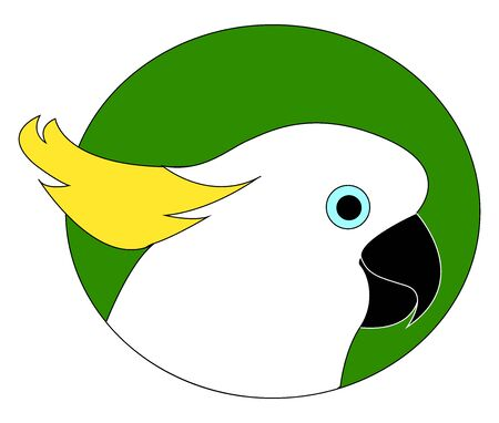 Cockatoo parrot, illustration, vector on white background.