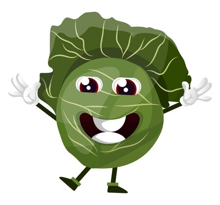 Cabbage is holding hands up, illustration, vector on white background. 向量圖像