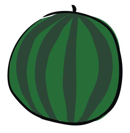 Big round watermelon, illustration, vector on white background. Ilustração