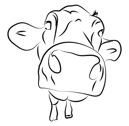 Cow head sketch, illustration, vector on white background.