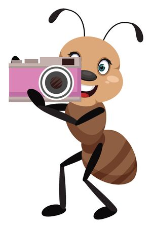 Ant with camera, illustration, vector on white background.