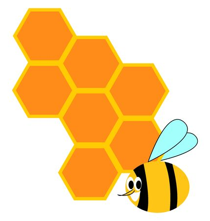 Honeycomb and bee, illustration, vector on white background.