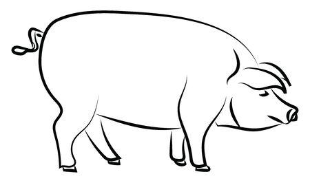 Big pig standing, illustration, vector on white background.