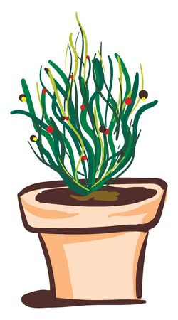 A leafy green plant in a pot, vector, color drawing or illustration.