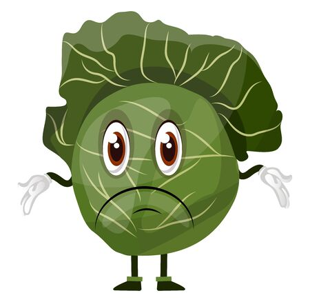 Confused cabbage, illustration, vector on white background. Illusztráció