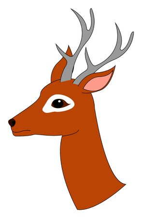 Young deer, illustration, vector on white background. Ilustrace