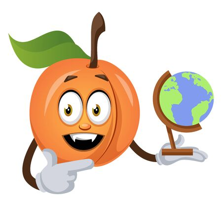 Apricot with globe, illustration, vector on white background.
