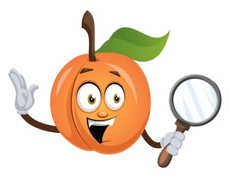 Apricot with magnifier tool, illustration, vector on white background.