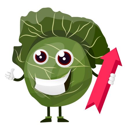 Cabbage with red arrow, illustration, vector on white background. Иллюстрация