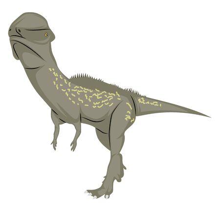 Stegoceras, illustration, vector on white background.