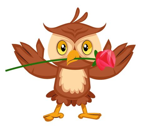 Owl with rose, illustration, vector on white background.