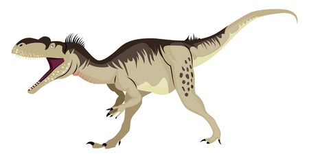 Megalosaurus, illustration, vector on white background.