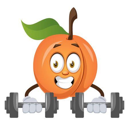Apricot lifting weights, illustration, vector on white background. Ilustração