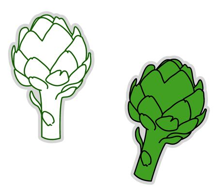 Green artichoke, illustration, vector on white background.