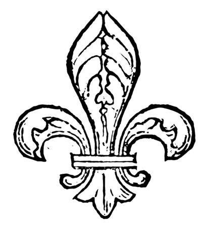 Fleur-de-Lis are often seen as a stylized lily, vintage line drawing or engraving illustration.