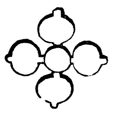 Quarter Foil have a four-leaved flower, vintage line drawing or engraving illustration.