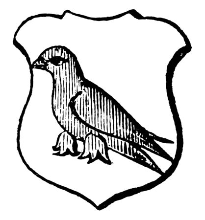 Martlet is an imaginary bird said to be without legs, vintage line drawing or engraving illustration.