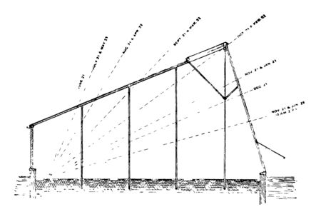 This illustration represents How much light needed for greenhouse vintage line drawing or engraving illustration.
