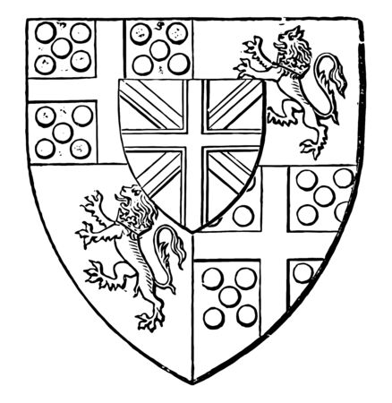 Arms of Duke of Wellington is a heraldry shield vintage line drawing or engraving illustration. Banque d'images - 132802597